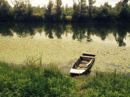 wetland reserve