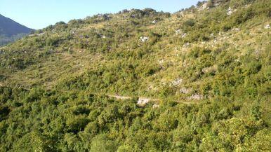 across-montenegro27